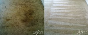 carpet cleaning hattiesburg ms