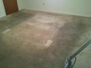 carpet-cleaning-hattiesburg-ms