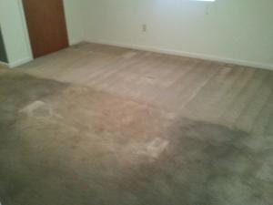 floor-cleaning-hattiesburg-ms